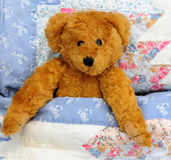 Bear in bed Royalty Free Stock Photos