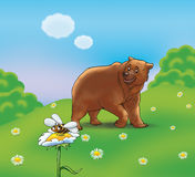 Bear and bee. Illustration. A brown bear meet with a cute bee, which is flying up to flower, in summer's nice day on a beautiful color background. Digital Royalty Free Stock Image