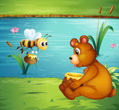 A bear and a bee at the riverbank Stock Image