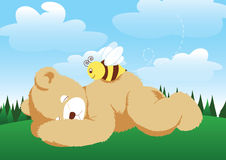 Bear and Bee. Vector illustration of a bear and bee Stock Image