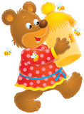 Bear with beehive Royalty Free Stock Photos