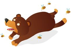 Bear with bees Stock Image