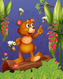 A bear and bees in the forest Stock Photos