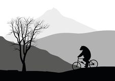 Bear on a bicycle. Royalty Free Stock Images