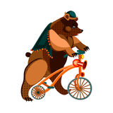 Bear on bike Royalty Free Stock Images