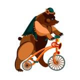 Bear on bike Royalty Free Stock Images