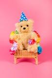Bear birthday Stock Image