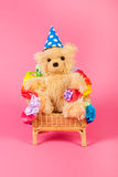Bear birthday Stock Image