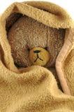 Bear and blanket. Brown bear in brown blanket Royalty Free Stock Photos