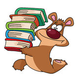 Bear and books Royalty Free Stock Image