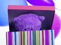Bear in box Stock Photos