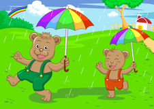 Bear brother in raining day Stock Photography