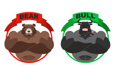 Bear and bull. Strong bear. Bull with horns on white background. Royalty Free Stock Photos