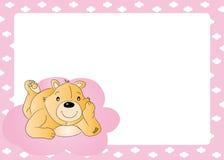 Bear Card Stock Images