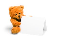 Bear with card. Sitting toy bear holding a white card stock image