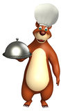 Bear cartoon character with cloche Stock Image