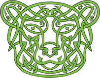 Bear Celtic Knot Stock Image