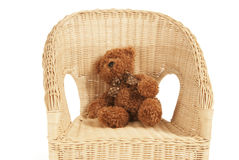 Bear on a chair Royalty Free Stock Photo