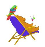 Bear in a chaise lounge with a p Stock Images
