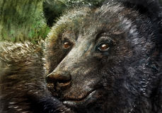 Bear in charcoal Royalty Free Stock Photography