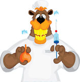 Bear cheerful doctor Royalty Free Stock Photos