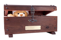Bear in the chest Royalty Free Stock Images