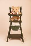 Bear in child seat Stock Photos