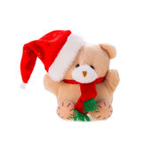 Bear with christmas gift Stock Image