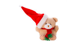 Bear with christmas gift Stock Photography