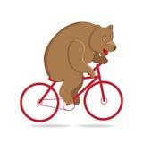 Bear in the circus, circus bear rides a red bike. Stock Photos