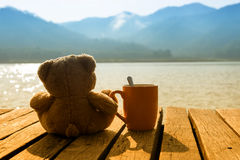 Bear Coffee Royalty Free Stock Photography