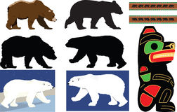 Bear collection Royalty Free Stock Images