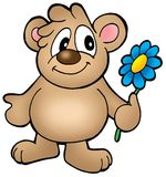 Bear with colorful flower Stock Photos