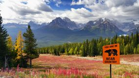 Bear Country, Canadian Rockies, Canada. Mountain trail in Bear Country with warning sign. Canadian Rockies, Alberta. Canada royalty free stock images