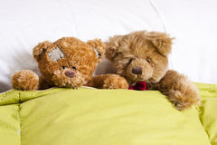 Bear couple in bed Stock Photo