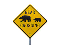 Bear Crossing Highway Sign Isolated on White Stock Photos