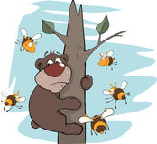 Bear cub and bees. Cartoon. The scared brown bear in an environment of malicious bees Royalty Free Stock Image