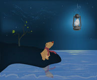 Bear cub and the moon. Bear standing on coast and looking at a lamp Royalty Free Stock Photo
