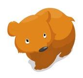 Bear so cute Stock Images