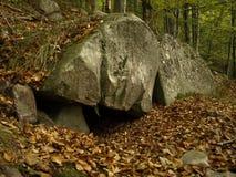 Bear den in Carpathian. A Bear (Ursus arctos) den in Carpathian Mountains, Romani in Vrancea, placed under a big stone of sandstone Stock Photography