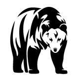 Bear design Stock Images