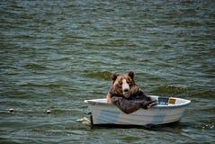 happy black bear in small boat royalty free stock photos