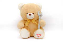 Bear doll carry wrench on isolated background Royalty Free Stock Photography