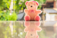 Bear doll Stock Photo