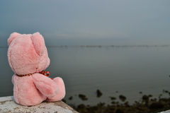 Bear doll feel lonely Stock Images