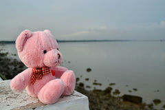 Bear doll feel lonely Royalty Free Stock Images