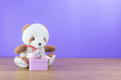 Bear doll with gift box Royalty Free Stock Photos