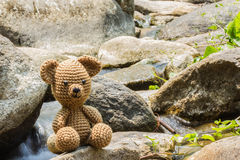 Bear doll on nature background Stock Image