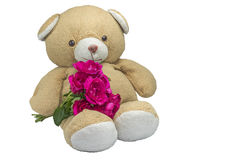 Bear doll with Pink Roses on white Royalty Free Stock Photos