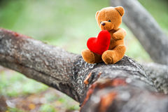 Bear doll Royalty Free Stock Photography